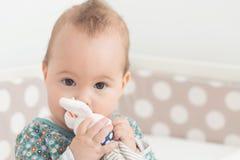 Otto mesi della neonata che succhia il suo giocattolo del coniglio Fotografia Stock Libera da Diritti