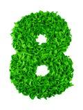 otto Numero fatto a mano 8 dai residui di carta verdi Fotografie Stock Libere da Diritti