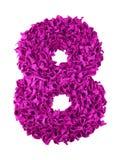 otto Numero fatto a mano 8 dai residui di colore di carta magenta Immagini Stock