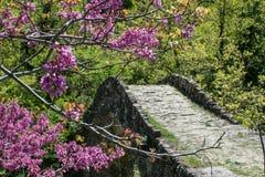 Ottoman bridge in the nature Stock Photo