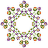 Ottoman motifs design series seventy eight Stock Images