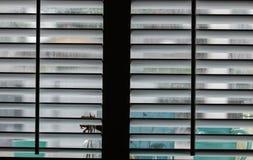 Otturatori della finestra fotografie stock