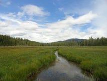 Otwarta łąka z zatoczką blisko McCall, Idaho fotografia royalty free