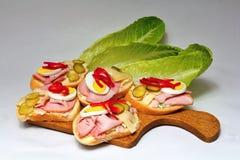 Otwarta kanapka Zdjęcie Stock