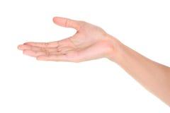 Otwarta palmowa ręka Fotografia Stock