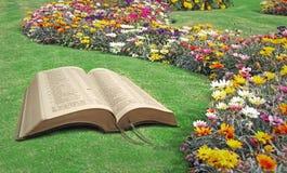Otwartej biblii spokoju raju duchowy park Fotografia Royalty Free