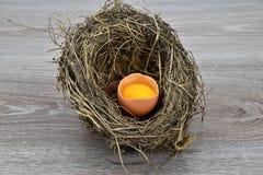 Otwarty jajko w ptaki gniazduje na drewnianym tle Zdjęcia Stock
