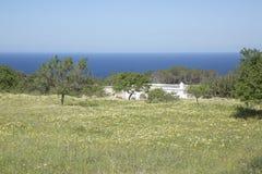 Otwarty pole blisko Hort plaży; Ibiza Zdjęcie Stock