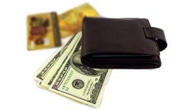 Otwarty portfel z dolarami i złoto kartą odizolowywającą Zdjęcie Stock