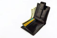 Otwarty portfel z dolarami, złoto karta odizolowywająca Fotografia Royalty Free
