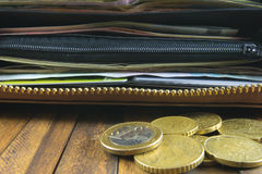Otwarty portfel z pieniądze, kredytowymi kartami i euro monetami, Obraz Royalty Free