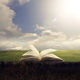 Otwiera biblię na ziemi Zdjęcie Royalty Free