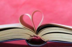Otwiera Książkę Zdjęcia Stock