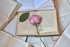 Otwiera książki i różowi różanego z liściem zdjęcie stock