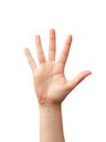 Otwiera rękę Fotografia Stock
