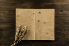 Otwiera starą rocznik książkę na starzejącym się drewnianym tle Ucho banatka obraz stock