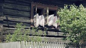 Otwiera starego okno z poduszkami Przewietrzenie z sypialnych koc zdjęcie wideo