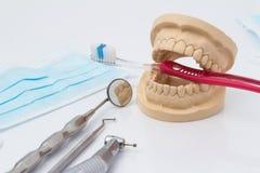 Otwiera stomatologiczną foremkę zęby z narzędziami Obraz Royalty Free