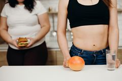 Otyła kobieta z hamburgerem i dietetyczka z owoc zdjęcie royalty free