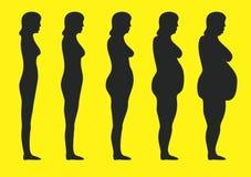 otyłość Obraz Stock