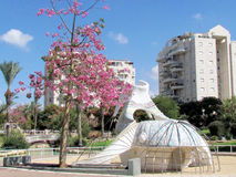 Ou Yehuda Neve Savyon 2011 photo stock