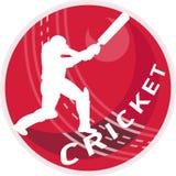 Ouate en feuille de batteur de joueur de cricket Photographie stock