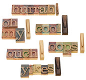 Ouch, oops, yikes, cool exclamations. Ouch, oops, yikes, hurrah, oh my - collage of isolated exclamation words in vintage wood letterpress printing blocks Stock Photo