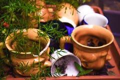 Oud aardewerk verlaten in de tuin royalty-vrije stock fotografie