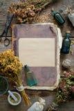 Oud antiek boek, tintflessen, assortiment van bossen van droge geneeskrachtige kruiden, mortier royalty-vrije stock foto's