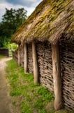 Oud bemost met stro bedekt dak in het traditionele Oekra?ense dorp stock foto's