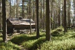 Oud betimmerd huis in het bos Royalty-vrije Stock Foto's