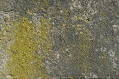 Oud beton royalty-vrije stock foto