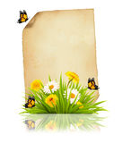 Oud blad van document met de lentebloemen en vlinders Royalty-vrije Stock Fotografie