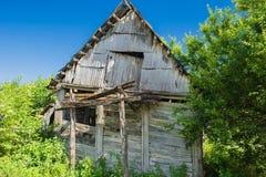 Oud blokhuis in het bos met blauwe hemel Stock Foto's