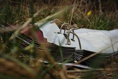 Oud boek in het gras royalty-vrije stock foto's