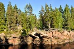 Oud bos in Imatra, Finland stock afbeeldingen