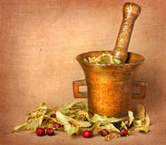 Oud bronsmortier met linde en rozebottels Royalty-vrije Stock Fotografie