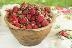 Oud ceramisch pottenhoogtepunt van verse rode aardbeien en klei op canvas De vruchten van het Healhtyvoedsel dieet stock afbeelding