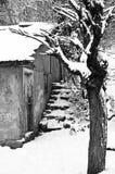 Oud die huis in bos, met sneeuw tijdens de winter wordt behandeld royalty-vrije stock fotografie