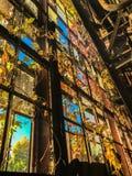 Oud die venster met bladeren en wijnstokken in verlaten fabriek wordt overwoekerd royalty-vrije stock fotografie