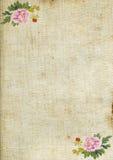 Oud document. Royalty-vrije Stock Afbeelding