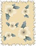 Oud document met bloemen stock illustratie