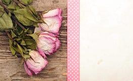 Oud document met droge rozen Royalty-vrije Stock Foto