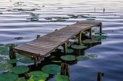 Oud dok, Reelfoot-Meer, Tennessee stock fotografie