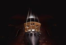 Oud Dusty Violin Details Stock Afbeelding
