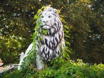 Oud edel leeuwstandbeeld in de groene de zomerklimop royalty-vrije stock foto's
