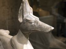 Oud Egyptisch hondstandbeeld Stock Foto