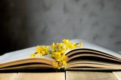 Oud geopend boek op een houten lijst Takken van gele bladeren op het boek stock fotografie