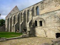Oud geruïneerd St Brigitta klooster in Pirita-gebied, Tallinn, Estland Royalty-vrije Stock Foto's