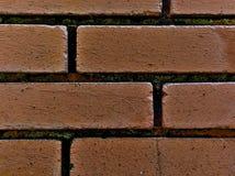Oud geweven bakstenen muurdetail met mos stock afbeelding